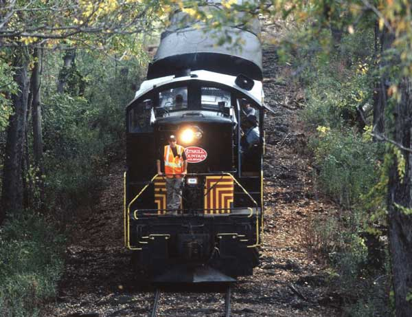 Front of train on track in forest